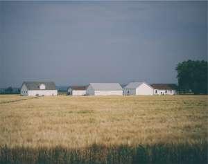 Co trzeba wiedzieć o podatku rolnym, leśnym i od nieruchomości w 2016 roku?