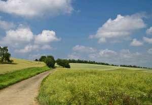 Kiedy i gdzie warto lokować kapitał w ziemię rolną