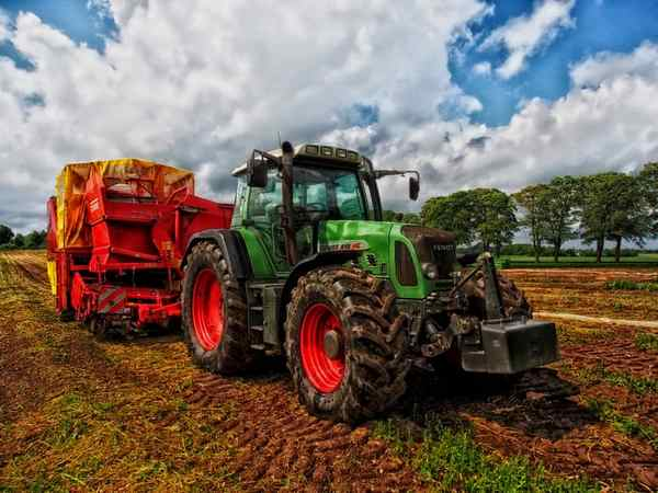 Z jakich dotacji unijnych może skorzystać młody rolnik – analiza wybranych rozwiązań w ramach PROW