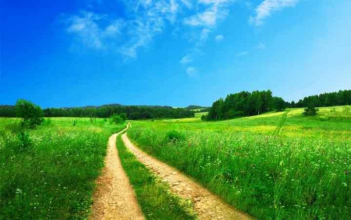 Jak rozwiązać odwieczny -sąsiedzki spór? o brak drogi dojazdowej do domu?